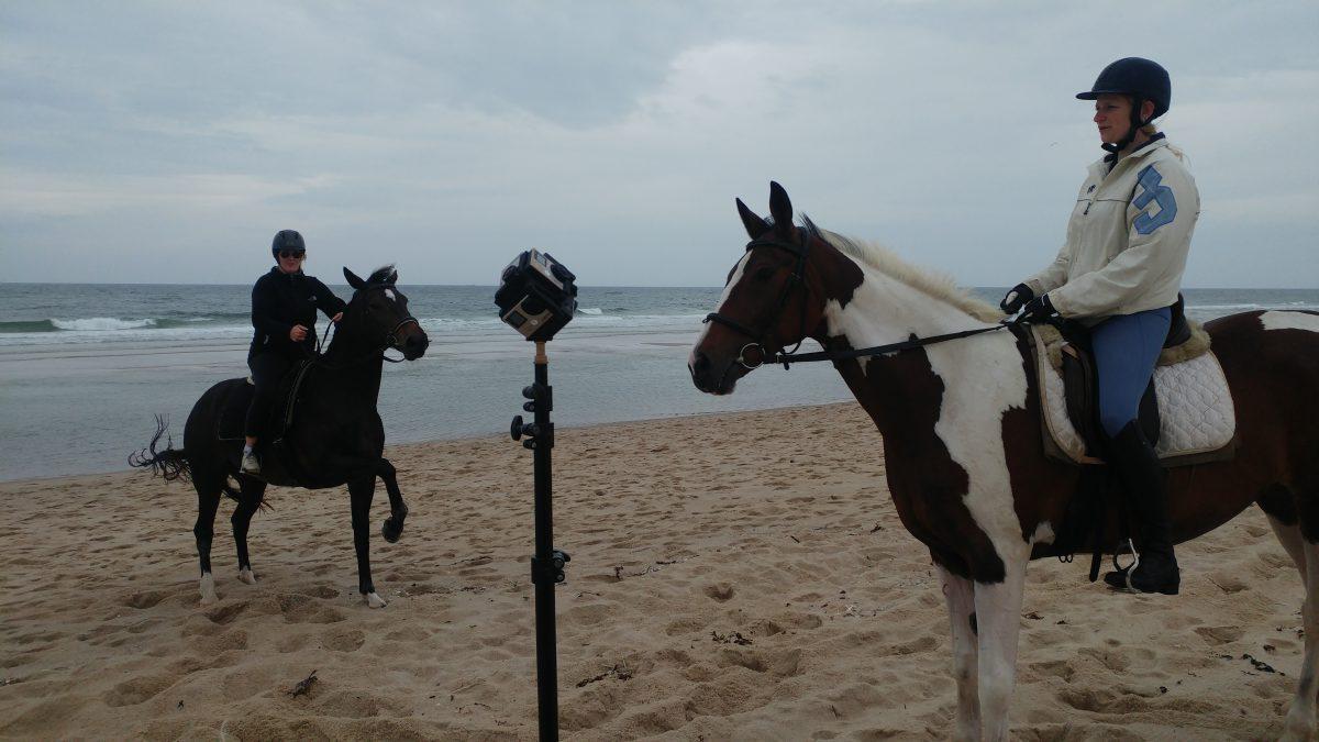 Zumindest einem der beiden Pferde ist die 360°.Kamera nicht so ganz geheuer.