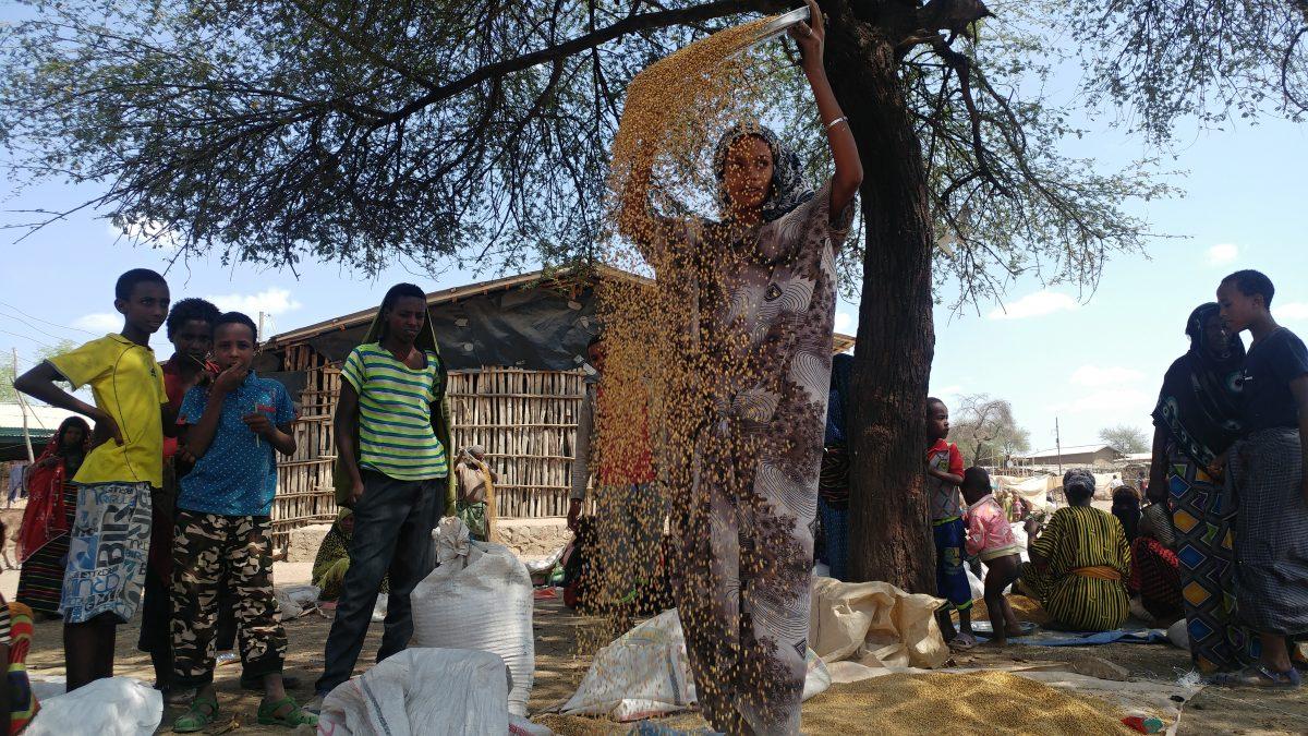 Auf dem Markt in Chifra - die junge Frau trennt so die Spreu von den Körnern. Foto: Susanne Dickel / IntoVR